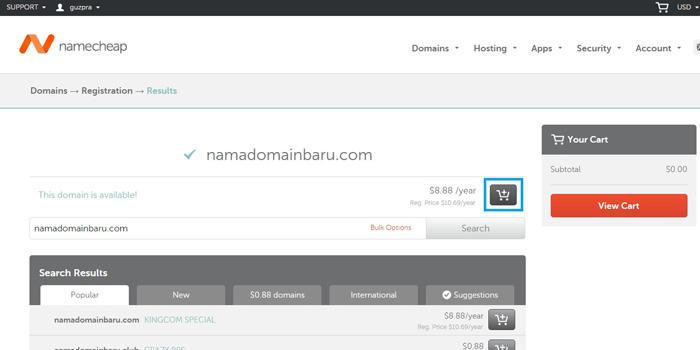 mendaftarkan domain namecheap1