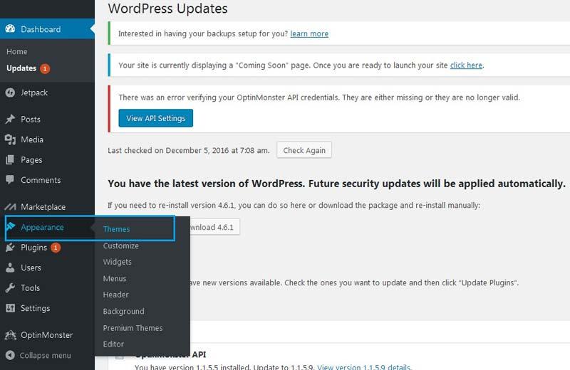 mengubah themes wordpress